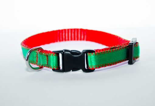 Green XS Puppy Collar