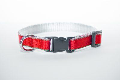 Red XXS Puppy Collar