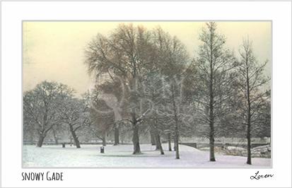 Snowy Gade